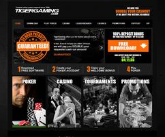 TigerGaming Website